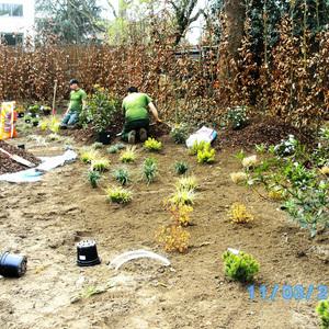 Garden Sylva SPRLU - Création et entretien de jardins